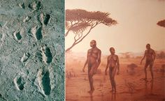 The Laetoli Footprints-3.6myo. Discovered by Mary Leakey & Paul Abell in fossilized volcanic ash in Laetoli, Tanzania. The footprint trail indicates bipedal apes most likely belonging to the species Australopithecus afarensis (Lucy's species).