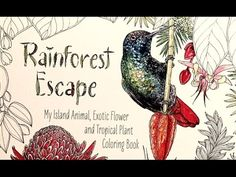 Adult Coloring in Rainforest Escape with Water Media Pt1