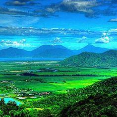 Henry Ross lookout located in the World Heritage Section on the Kuranda Range #cairns #lookouts #WetTropics #worldheritage #thisismyparadise #thisisqueensland #seeaustralia #exploreTNQ #queensland #australia #nature #naturephotography