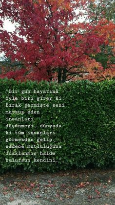 Mutluluk Sözleri One day, someone enters your life. Stop thinking about people who made you unhappy in the past, ignoring all the people in the world . Meaningful Words, Eminem, Book Quotes, Beautiful Words, Cool Words, Quotations, Literature, Inspirational Quotes, Feelings
