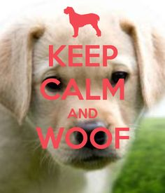 KEEP CALM AND WOOF   ---    I was just checking it to make sure your food was not getting cold.