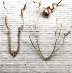Geweldig Gewei www.geweldiggewei.nl gewei antlers hout wood muur wall tak takken galerie amsterdam