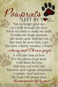 Hearfelt tribute to wonderful dogs that have touched our lives . ❤this