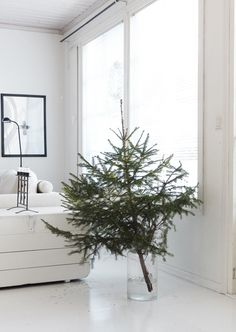 Minimal Christmas tree in glass vase Minimal Christmas tree in glass vase The post Minimal Christmas tree in glass vase appeared first on Skandinavisch Diy. Minimal Christmas, Modern Christmas, Scandinavian Christmas, Simple Christmas, Minimalist Christmas Tree, Natural Christmas, White Christmas, Real Christmas Tree, Noel Christmas