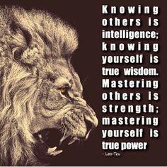 Intelligence, wisdom strength quotes