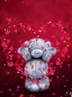 Super Ideas For Funny Happy Birthday Images Valentines Day Teddy Pictures, Bear Pictures, Cute Pictures, Images For Valentines Day, Valentine Day Love, Bear Valentines, Tatty Teddy, Funny Happy Birthday Images, Funny Birthday