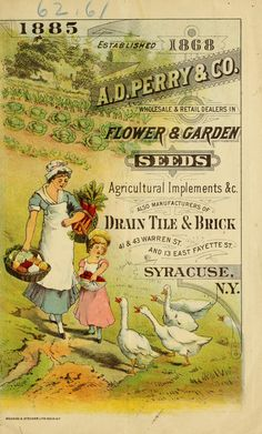 A.D.Perry & Co,  fifteenth annual seed catalogue,  1885