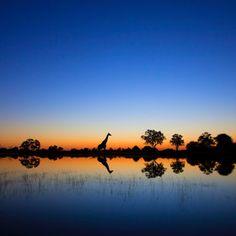 Afrika Bild