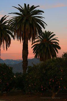 Redlands California