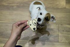 PET portrait custom cookie cutter