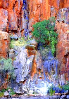 """My photo of what looks like an eagle's eyrie above a veil of stone in the """"bee hive"""" cliffs above Python Pool, Millstream-Chichester National Park, The Pilbara I love the complementary colours of orange and blue - so intense."""