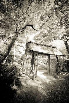 Kyoto, Japan: photo by Stéphane Barbery, via Flickr