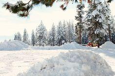 Dreamy Whites: Montana