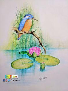 Quiet Nature- Color Pencil Art