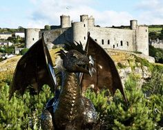 Recycled Harlech Dragon
