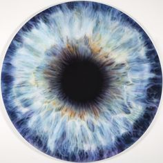 We Share our Chemistry with the Stars (KN by Marc Quinn add to folder Eye Texture, Marc Quinn, Eyes Artwork, Realistic Eye, Crazy Eyes, Human Eye, Eye Photography, Anatomy Art, Doll Eyes