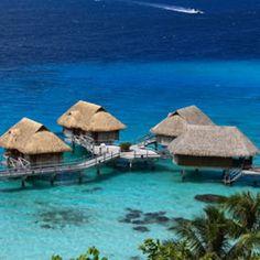 polynesiasingles.com  Vacation Idea