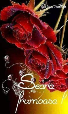 Buna seara prietenii mei dragi - Irina Pintilie - Google+