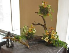 Christopher Flowers, Seattle - woodland, orchid, moss, natural, event