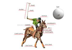 Perfect diagram showcasing all the tools of Polo Horse, Polo Team, Kings Game, Wooden Horse, Sport Of Kings, Marco Polo, Polo Club, Horse Farms, Sports Games