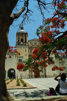 Oaxaca, Mexico - so happy my cousin is getting married here this year. We'll be there.