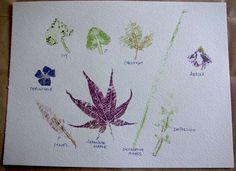 Hammer + leaves = botanical prints.