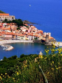 Collioure. In the South of France! One of my favorite places!