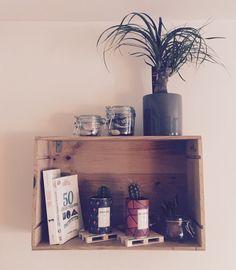 Étagère Botanique, Plantes grasses et Cactus. Caisse de bouteilles de vin. DIY