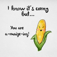 I know it's corny but... You are a-maize-ing!