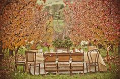 Table among the autumn trees