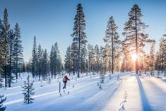 Panoramic view of man cross-country skiing on a track in beautiful nordic winter wonderland scenery in Scandinavia with scenic evening light at sunset in winter, Northern Europe , Budget Travel, Travel Guide, Places To Travel, Places To Visit, Finland Travel, Island Park, Arctic Circle, Cross Country Skiing, Europe Destinations