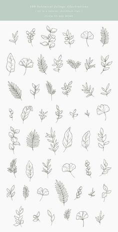 This bundle includes 50 unique botanical floral illustrations which you can use for logos, invitations, stationery, patterns and much more. This design kit is drawn in Illustrator, vector based and high quality. Bullet Journal Art, Bullet Journal Ideas Pages, Bullet Journal Inspiration, Mini Tattoos, Flower Tattoos, Small Tattoos, Leaf Tattoos, Floral Drawing, Drawing Flowers