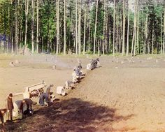 Monks at Work Planting Potatoes by Sergei Mikhailovich Prokudin-Gorskii