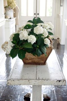 Country White Cottage - White Hydrangea Arrangement
