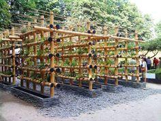 bamboo-garden-vertical4 More