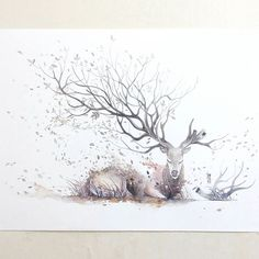 Luqman Reza Mulyono Indonesian Artist - Jongkie, has created Gorgeous Watercolor Paintings. he is very talented in the art of watercolor painting, his work was Hirsch Illustration, Illustration Noel, Watercolour Illustration, Art Et Nature, Deer Art, Stag Deer, Inspiration Art, Painting & Drawing, Amazing Art