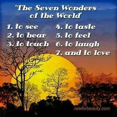 The Seven Wonders of the World . to see to hear to touch to taste to feel to laugh and to love Great Quotes, Inspirational Quotes, Motivational, Welcome Quotes, Seven Wonders, Spiritual Practices, Love And Light, Love Life, Wonders Of The World