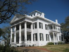 Stanton Hall ~ Natchez Miss.   Used as the interior shots for Mont Royal in North and South