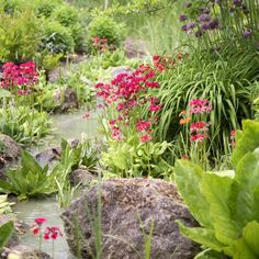 flower gardens country style | Down beside the stream | Country garden ideas | Homes & Gardens ...
