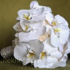 Email Orchid and Rose Bouquet Jill's white bouquet of orchids and roses was finished with crystals and wrapped in a rhinestone-studded chiffon ribbon. White Orchid Bouquet, Orchid Bridal Bouquets, Beach Wedding Bouquets, White Wedding Flowers, Bridal Flowers, Flower Bouquet Wedding, Rose Bouquet, Bridesmaid Bouquet, White Bouquets