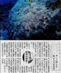 100+件】朝日新聞|おすすめの画像【2020】 | 国賊, プロパガンダ, 慰安婦