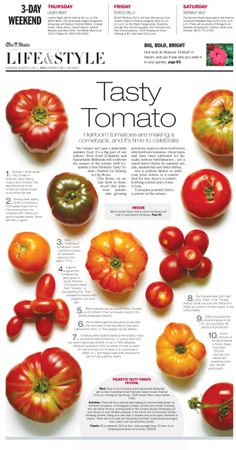 Take a wire photo and illustrate your tomato primer.