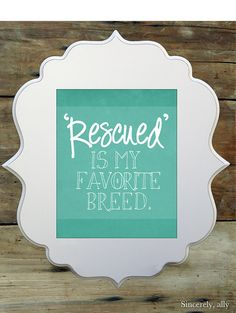 8x10 Pet Quote Art Print - Rescued is my favorite breed - Dog Quote - Pet Quotes