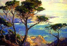 Un promontoire solitaire, Point Lobos - (Franz Bischoff)