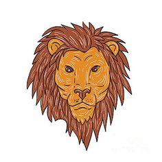 Male Lion Big Cat Head Drawing by Aloysius Patrimonio