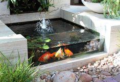 aménagement de jardin rocaille avec bassin d'eau et poisson rouge koï