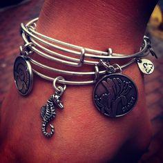 Alex and Ani bracelets.