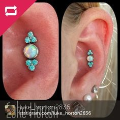 Well, that is pretty! This picture is of 3 in-line piercings that Luke from Mantra Tattoo in Lakewood CO did, in the Conch area of a client ... Cartilage Jewelry, Body Jewelry Piercing, Body Piercings, Ear Jewelry, Piercing Tattoo, Cute Jewelry, Unique Piercings, Conch Piercings, Peircings