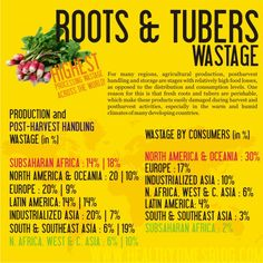 Infographic, developed by the Health Times Blog, and reported by Forbes, showing the types of food waste (roots and tubers) in different areas of the world. [Source: Forbes, www.forbes.com/... 6, April. 2012]