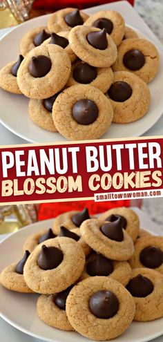 This classic Christmas dessert is a must for your cookie exchange! Packed full of flavor and topped with a dark chocolate kiss, these slightly chewy Peanut Butter Blossom Cookies are loved by generations. Wow your family and friends on the holidays with this easy recipe! Easy Cookie Recipes, Baking Recipes, Dessert Recipes, Fudge Recipes, Dessert Ideas, Cake Recipes, Just Desserts, Delicious Desserts, Peanut Butter Blossom Cookies